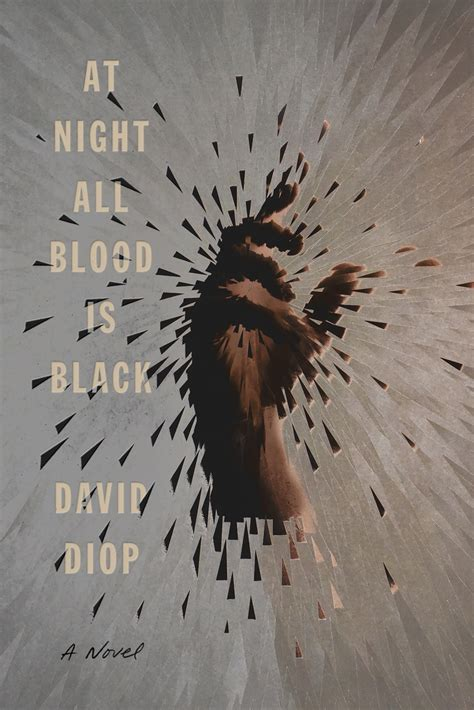 Book Cover for the Novel At Night All Blood is Black by David Diop, showing a fractured image of a hand.